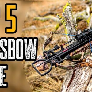 Top 5 Best Crossbow Scopes For The Money