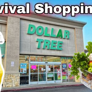 Dollar Tree Survival Shopping - Can It Be Done?