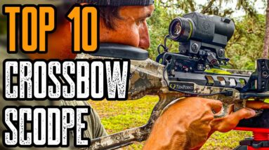 Top 10 Best Crossbow Scopes For The Money