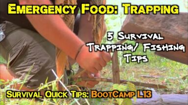 5 Survival Trapping Tips for Disaster and Emergency Food Preparedness