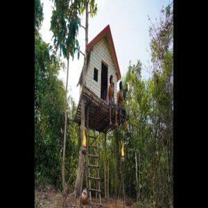Build Tree House, Short
